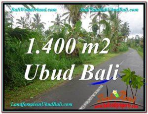 JUAL MURAH TANAH di UBUD Untuk INVESTASI TJUB612