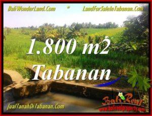 TANAH MURAH JUAL   TABANAN 1,800 m2  View sawah