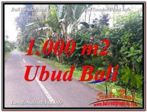 JUAL TANAH MURAH di UBUD BALI 10 Are View Kebun dan Pangkung