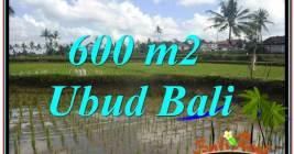 JUAL MURAH TANAH di UBUD BALI 6 Are View sawah