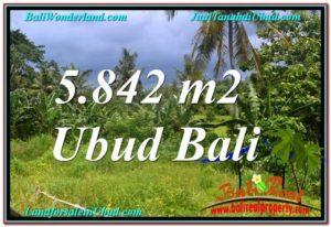 TANAH DIJUAL MURAH di UBUD BALI 5,842 m2 di Sentral / Ubud Center
