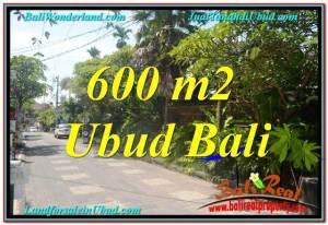 JUAL TANAH di UBUD BALI 600 m2 Kawasan Hotel, Villa dan Restaurant