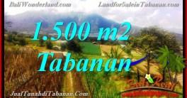 TANAH MURAH di TABANAN BALI DIJUAL 1,500 m2 View Danau Beratan dan Gunung