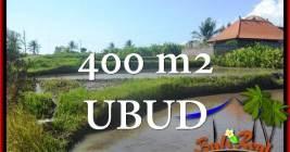 TANAH di UBUD BALI DIJUAL MURAH 400 m2 di Ubud Gianyar