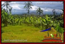 TANAH MURAH DIJUAL di UBUD BALI 25,000 m2 di Ubud Payangan