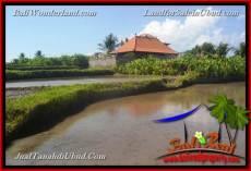 TANAH MURAH DIJUAL di UBUD 4 Are di Ubud Gianyar