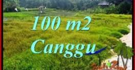 TANAH MURAH di CANGGU BALI DIJUAL 1 Are VIEW SAWAH, LINGKUNGAN VILLA