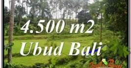 JUAL MURAH TANAH di UBUD BALI Untuk INVESTASI TJUB675