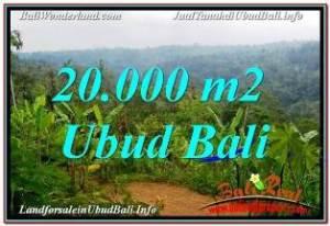 TANAH JUAL MURAH  UBUD BALI 20,000 m2  VIEW SUNGAI DAN TEBING