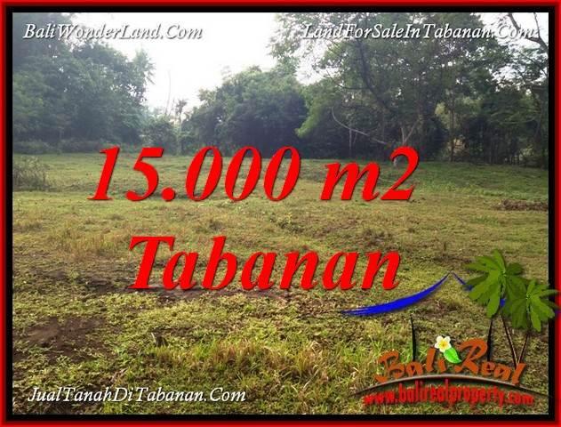 DIJUAL MURAH TANAH di TABANAN 15,000 m2 di TABANAN KOTA