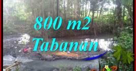 JUAL TANAH MURAH di TABANAN 8 Are VIEW KEBUN DAN SUNGAI