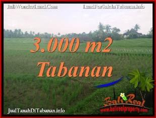 JUAL TANAH DI TABANAN 3,000 m2 VIEW SAWAH