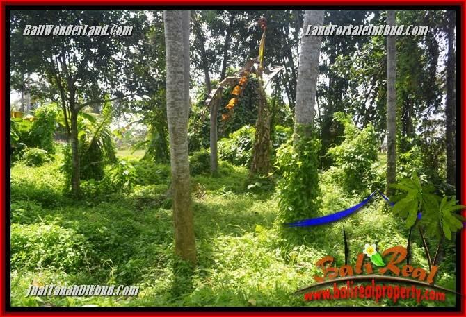Dijual Murah Tanah di Ubud Bali Untuk Investasi TJUB684