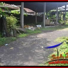 Tanah Murah di Tabanan Bali Dijual 600 m2 View Kebun