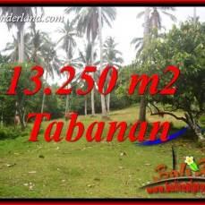 Tanah di Tabanan Bali Dijual Murah TJTB403