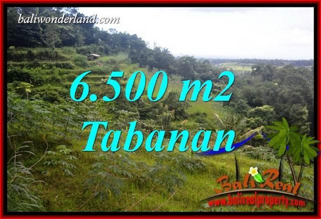 Dijual Murah Tanah di Tabanan Bali 6,500 m2 di Tabanan Penebel