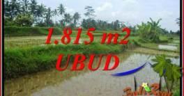Tanah Murah jual Ubud 18 Are View sawah