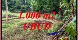 Tanah Dijual di Ubud Bali 10 Are di Sentral Ubud