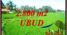Dijual Tanah Murah di Ubud Bali Untuk Investasi TJUB726