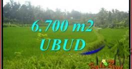 Dijual Murah Tanah di Ubud Bali Untuk Investasi TJUB731