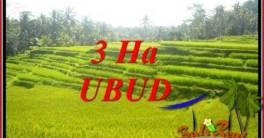 Tanah Murah di Ubud Dijual TJUB733