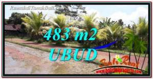 DIJUAL TANAH di UBUD 483 m2 di Ubud Pejeng
