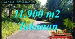 JUAL TANAH MURAH di TABANAN 119 Are LEMBAH DAN HUTAN