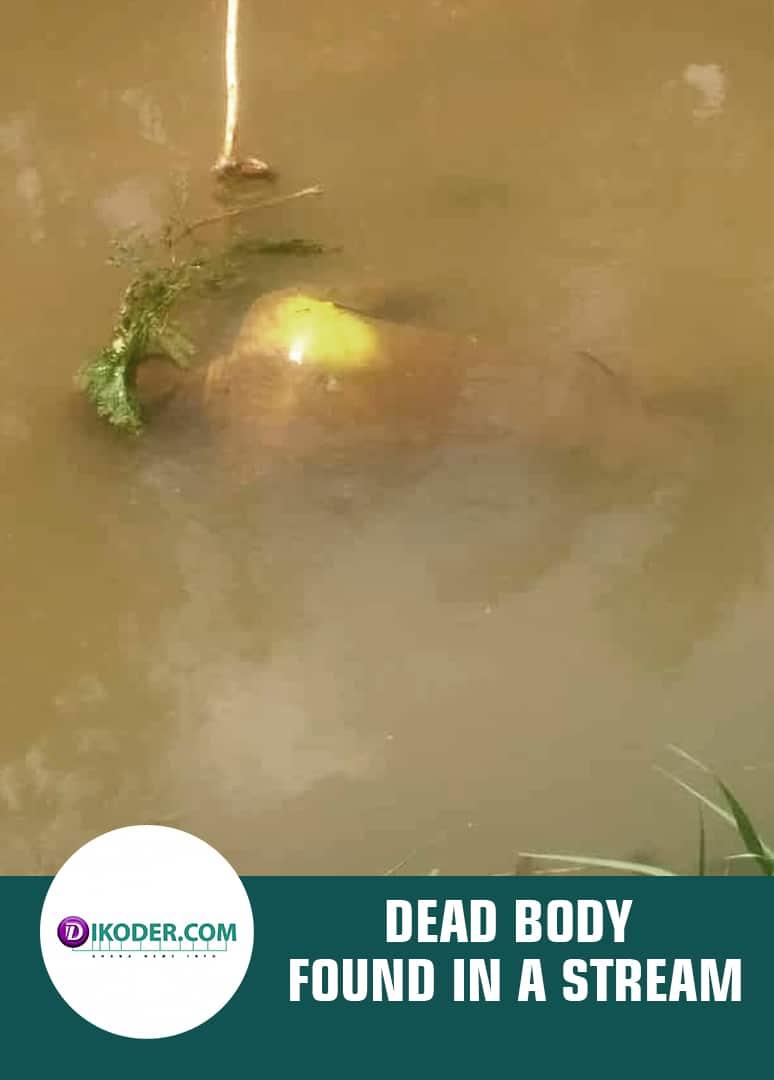 DEAD BODY FOUND IN A STREAM