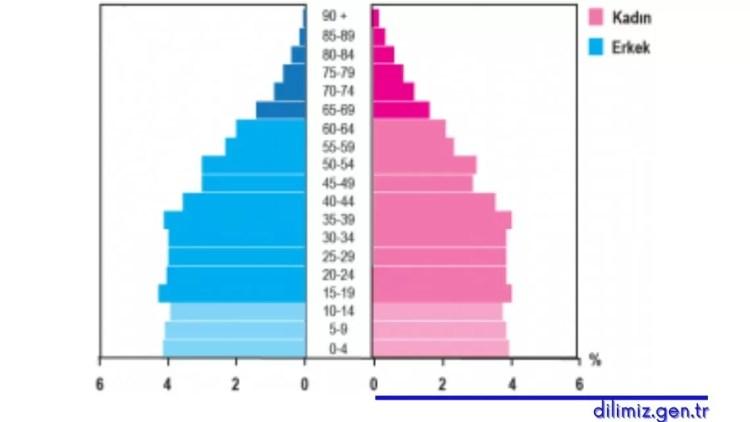 2016 yılına ait Türkiye nüfusunun yaş piramidi