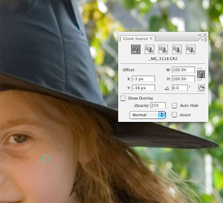 Photoshop CS3 Beta Review