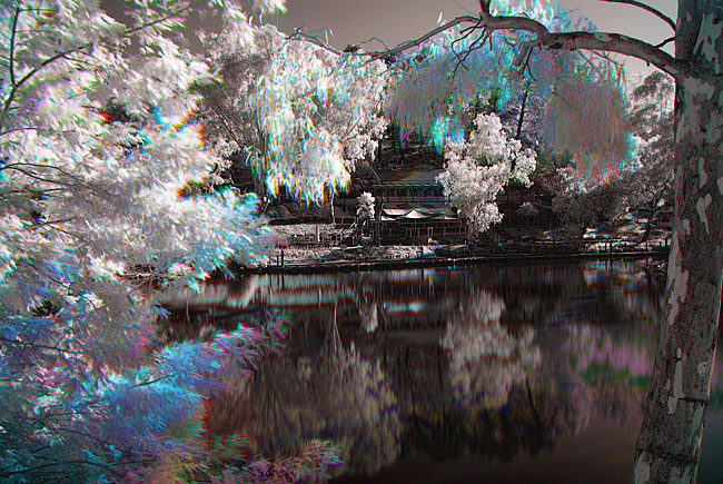 Tri-color digital photography tutorial using infrared images