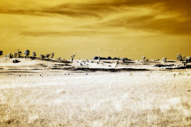 Infrared photography in central Victoria
