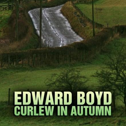 Curlew in Autumn – Edward Boyd