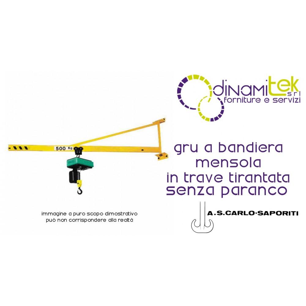 hight resolution of jib crane cantilever beam tirantata to s carlo saporiti dinamitek 1