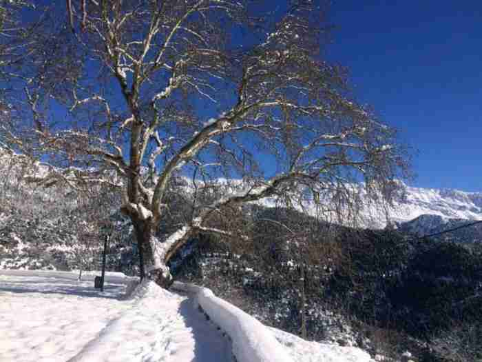 Το ωραιότερο χωριό της Φωκίδας μοιάζει με μικρό Παράδεισο