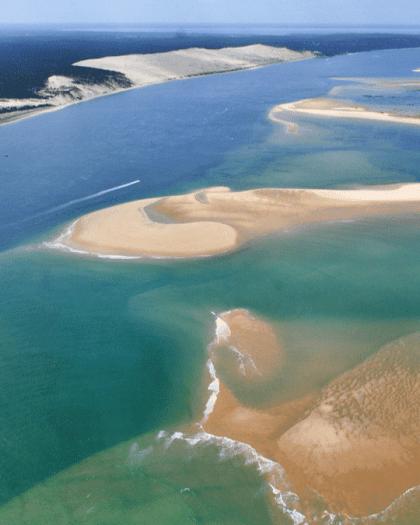 banc d'arguin bassin arcachon