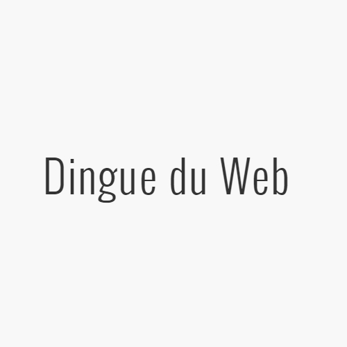 avatar-dingue-du-web