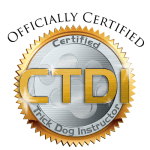 Certified CTDI Logo