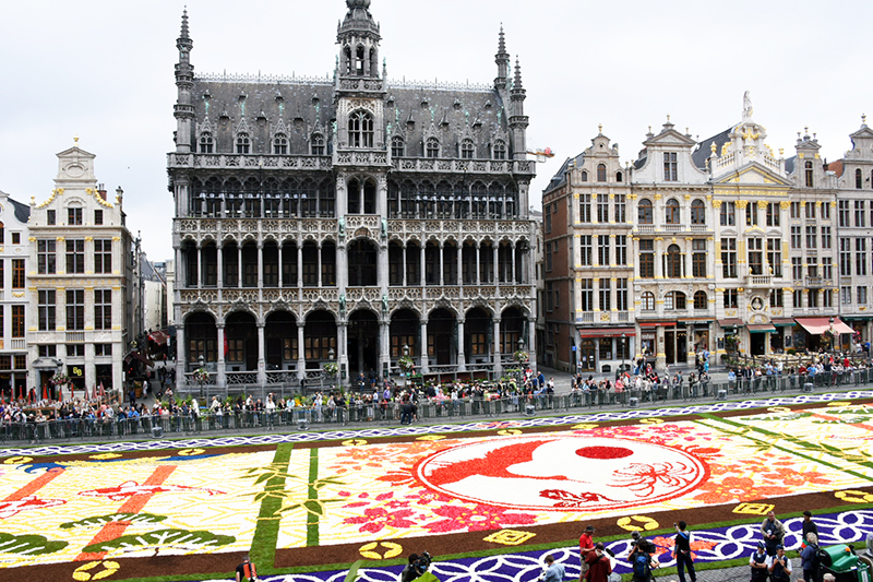 The Magic of the Brussels Flower Carpet