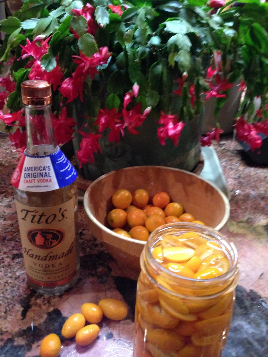 Good Intentions and Vodka Infused Kumquats