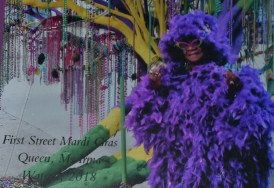 Ms Watson Mardi Gras Tree Need a quickie- Drop into New Orleans for 48 hours www.diningwithmimi.com