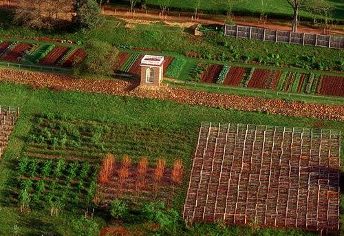 Monticello, parte din gradina de legume si livada sudica