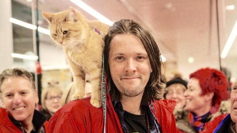 Bob si Dewey. Doi motani. Doua povesti de viata. Doua romane cu pisici. (I)