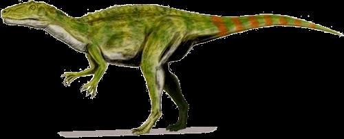 Fukuiraptor kitadaniensis  DinoChecker Dinosaur Gallery