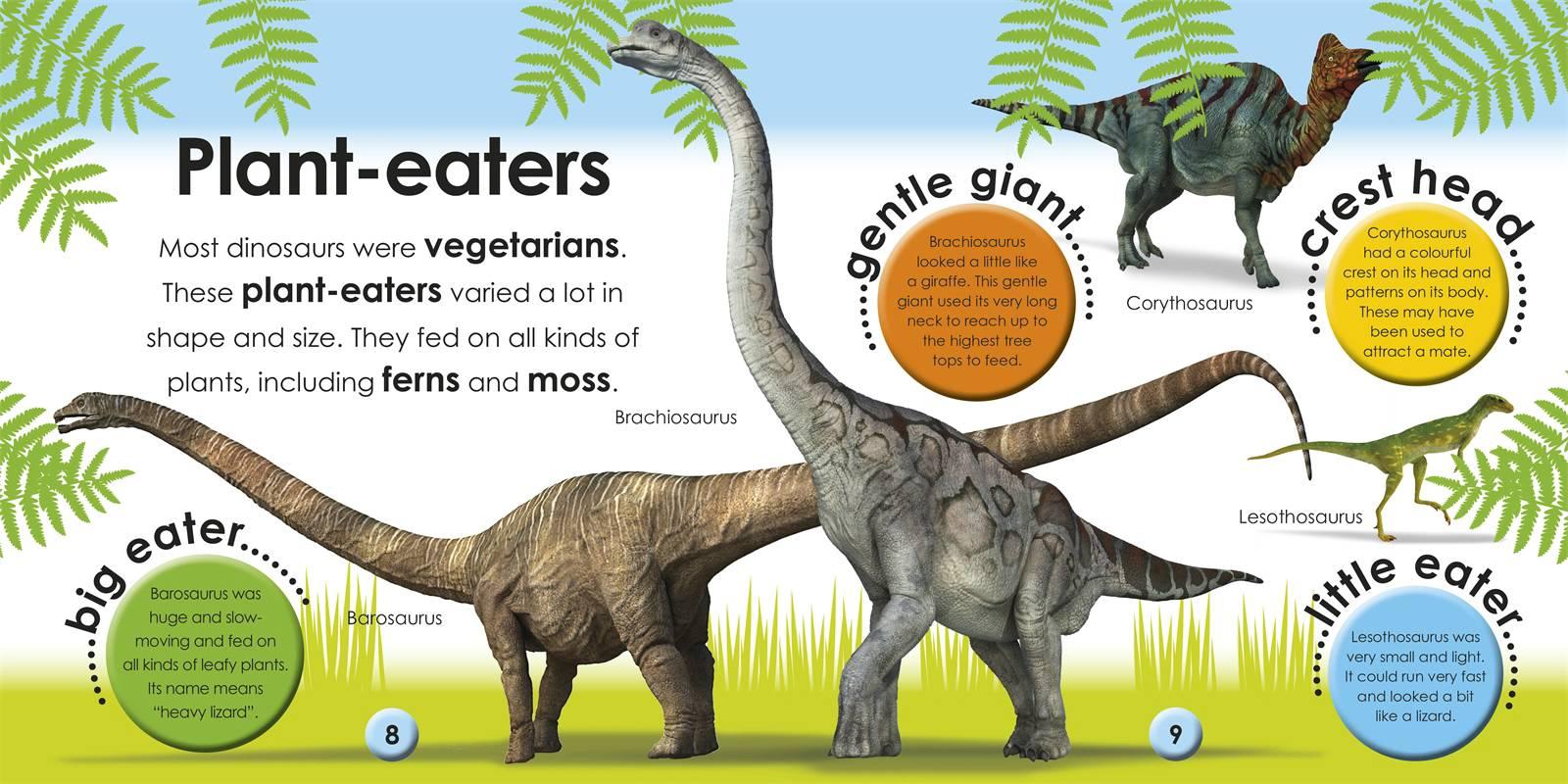 Dinosaur Information For Kids