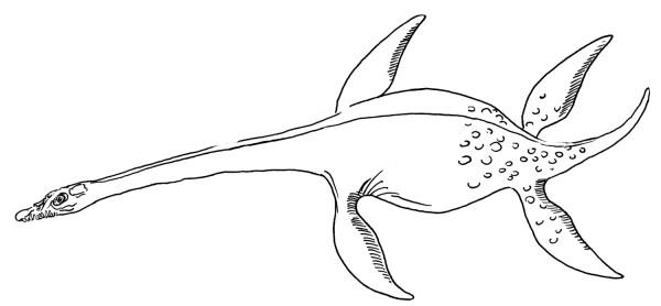 Printable Plesiosaur Dinosaur