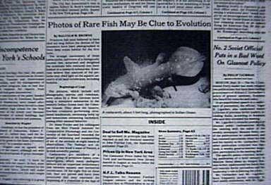 ein lebender Quastenflosser auf der Titelseite der New York Times