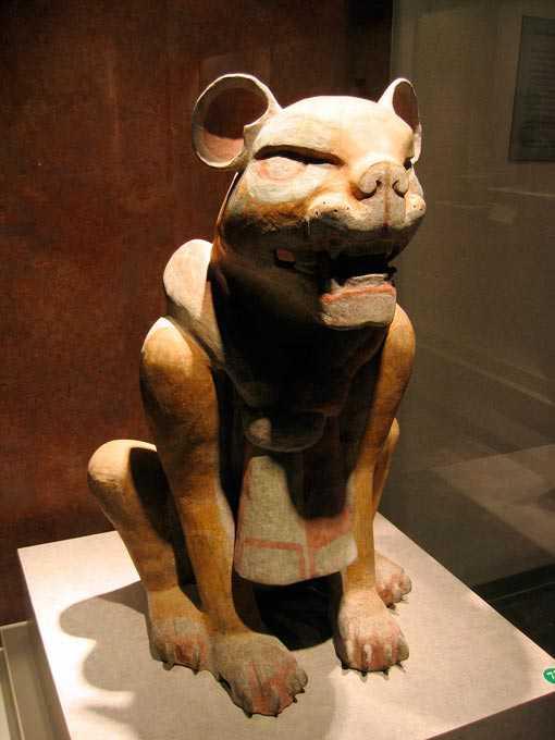 Symbolisme Du Jaguar En Images Dinosoria
