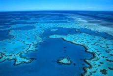 la grande barrière de corail cairns