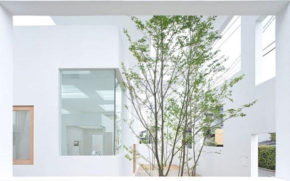 housen-soufujimoto-minimalismo2